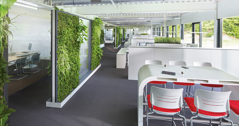 vườn cây trong văn phòng