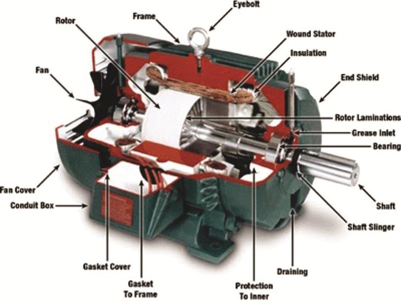Hướng dẫn quy trình bảo dưỡng Động cơ điện
