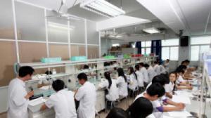 Nam Định: 22 bài thi Ngữ văn đạt từ 9 điểm trở lên