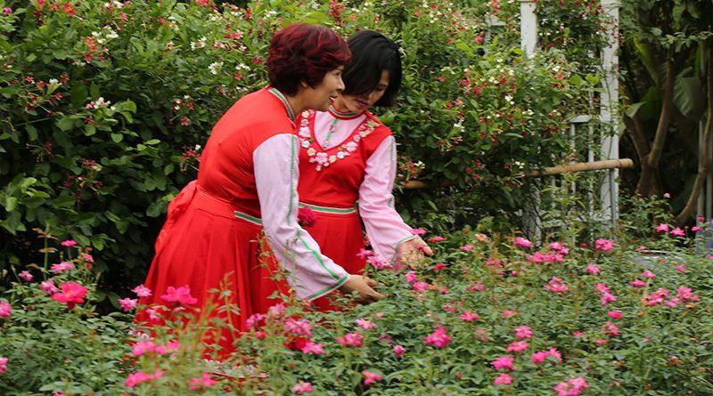 Nhộn nhịp ngày hội Thu vàng trên vườn hồng