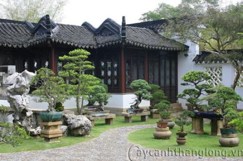 Vườn Trung Hoa – vẻ đẹp quyến rũ