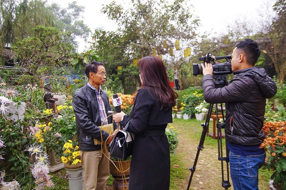 TH Thông Tấn (VNews) đưa tin về vườn cúc quý của ông Đào Mạnh Hùng