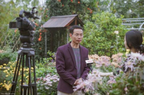 Báo Lao Động phỏng vấn và ghi hình chuyên gia Đào Mạnh Hùng về vườn Cúc quý