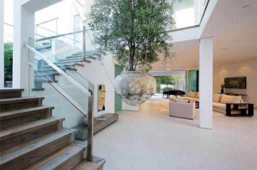 Tác dụng của các loại cây nội thất văn phòng – Vì sao nên trồng cây xanh trong nhà?