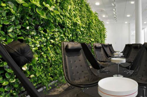 Không gian văn phòng hiện đại với cây xanh