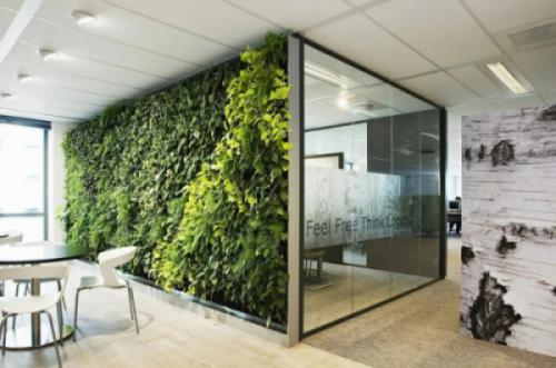 Các yếu tố thiết kế văn phòng sinh thái mang thiên nhiên vào nơi làm việc