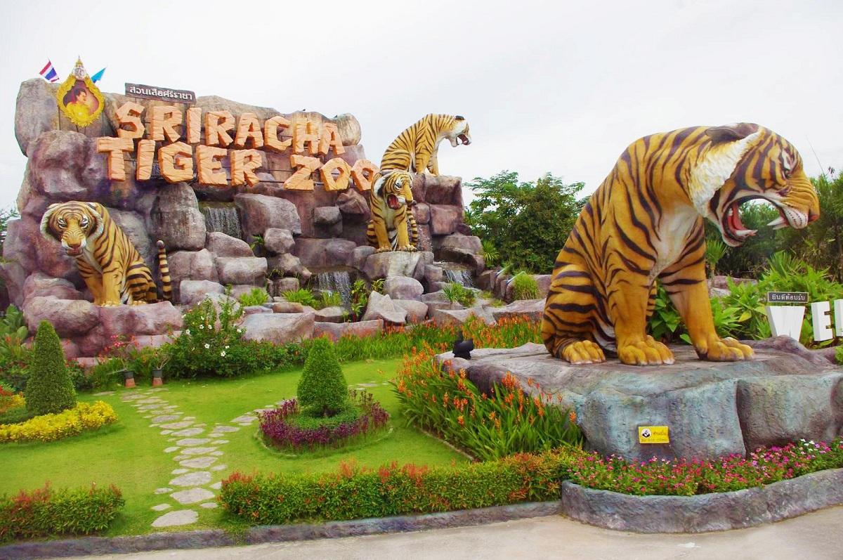 Trại Cá Sấu - vườn thú Sriracha Tiger Zoo