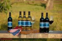 Rượu vang Mỹ những kiến thức cần biết
