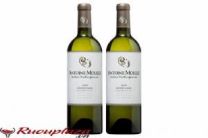 Rượu vang Pháp Bordeaux Antoine Moueix Nồng độ 12%