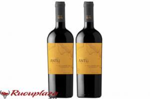 Rượu vang Chile MontGras Antu Limited Cabernet Franc