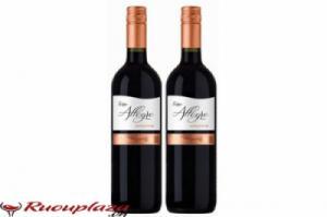 Rượu vang ý Terre Allegre Sangiovese IGT