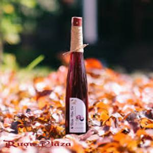 Rượu mận Sapa