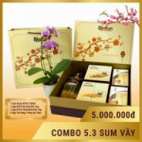 Hộp quà tết cao cấp Đông Trùng Hạ Thảo Biofun 04
