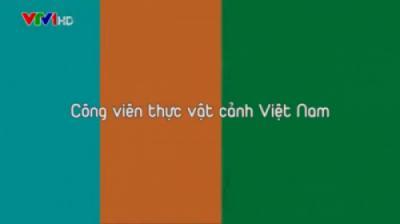 Công viên thực vật cảnh Việt Nam lên đài VTV chương trình