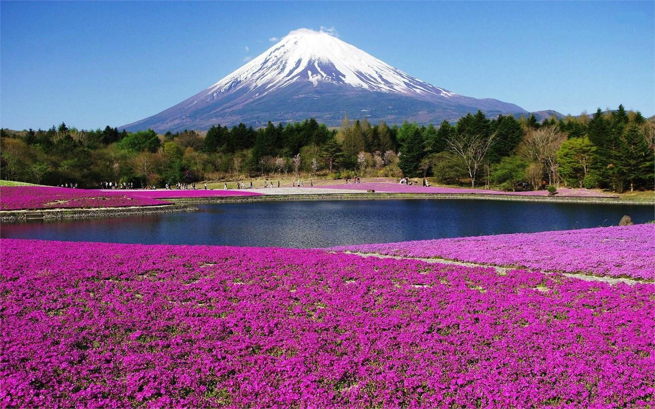 OSAKA – KOBE –KYOTO – NÚI PHÚ SĨ – TOKYO (BAY VN)
