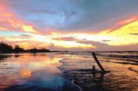 Du lịch Việt Nam: Khám phá vẻ đẹp Hồ Tràm