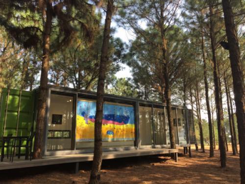 Du lịch Hà Nội: Khu rừng thông bên hồ - điểm chơi cuối tuần gần Hà Nội