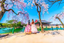HÀN QUỐC - MÙA HOA ANH ĐÀO 2019