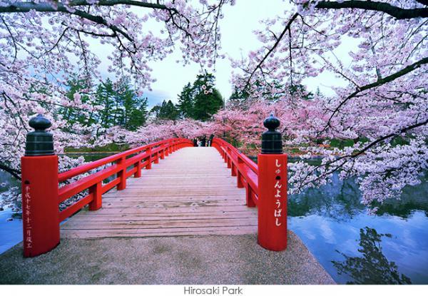 HOKKAIDO -   THIÊN ĐƯỜNG CỦA TẠO HÓA