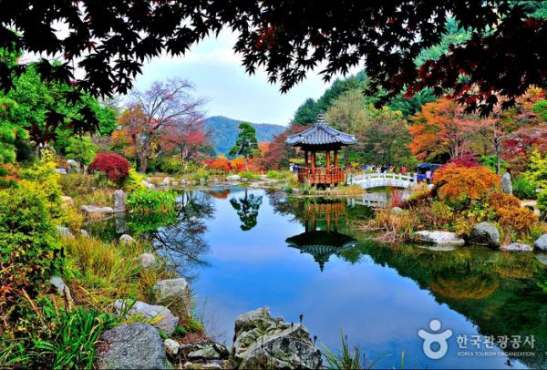 SEOUL - NAMI - EVERLAND