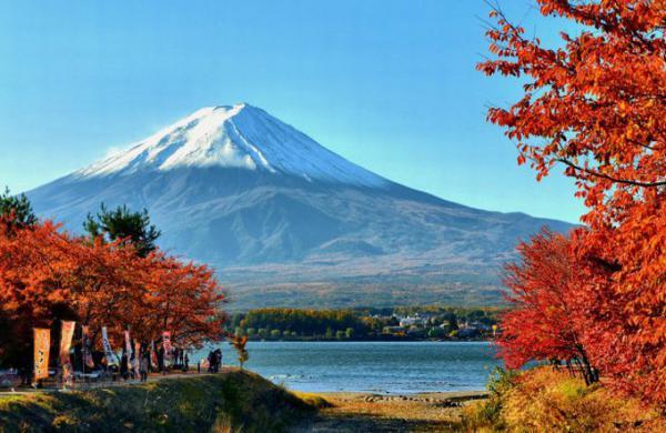 TOKYO - NÚI PHÚ SĨ - NGẮM HOA THEO MÙA