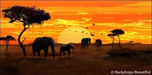 KENYA: THIÊN ĐƯỜNG HOANG DÃ TẠI CHÂU PHI