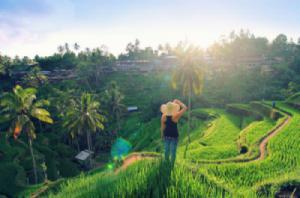 HOT: Du khách Việt có thể xuất cảnh mà không cần qua hải quan ở Bali