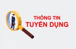 Blue Sky Việt Nam tuyển dụng Nhân viên Ticketing