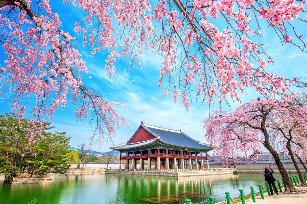 SEOUL - NAMI - EVERLAND (VNA)