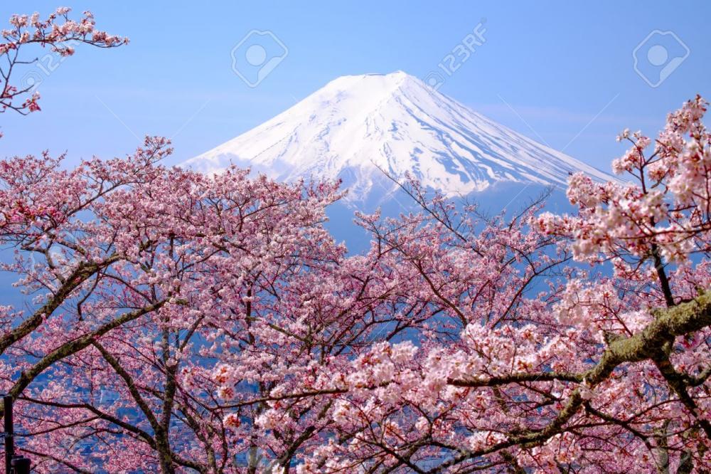 OSAKA – KOBE – KYOTO – NAGOYA –  NÚI PHÚ SĨ – TOKYO