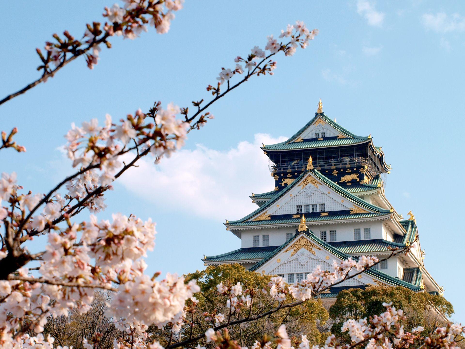 OSAKA – KYOTO – NÚI PHÚ SĨ – TOKYO (AIR MACAU)