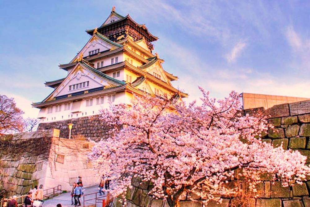 NAGOYA – NARA – KYOTO –  NÚI PHÚ SĨ – TOKYO  (HOA ANH ĐÀO)