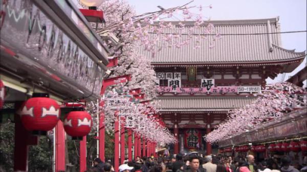 TOKYO – NÚI PHÚ SĨ – KYOTO – OSAKA (HOA ANH ĐÀO)