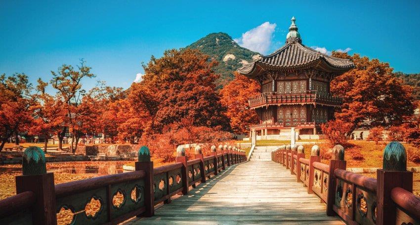 SEOUL -  NAMI – CÔNG VIÊN EVERLAND