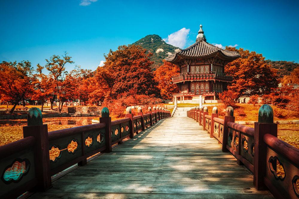 SEOUL -  NAMI – CÔNG VIÊN EVERLAND (JIN AIR)