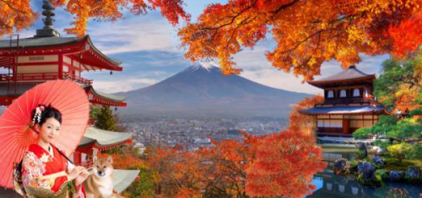 NAGOYA – NARA – KYOTO –  NÚI PHÚ SĨ – TOKYO