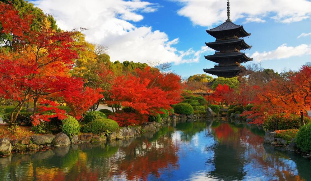 TOKYO – NÚI PHÚ SĨ – HAMAMATSU – KYOTO – OSAKA – NARA – NAGOYA
