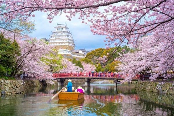 NAGOYA – NARA – OSAKA – KYOTO – FUJI– TOKYO (Hoa Anh Đào 2020)