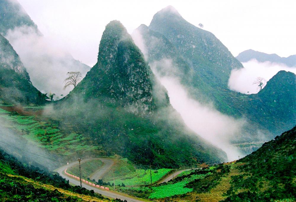 Lễ hội Tam Giác Mạch Hà Giang