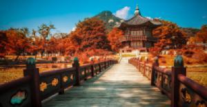 Seoul - Nami - Everland {5 ngày - Bay Vietjet}