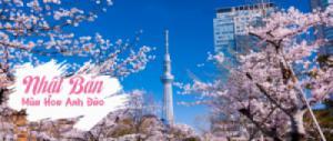 HÀ NỘI - TOKYO - NÚI PHÚ SĨ - NAGOYA - KYOTO - OSAKA - HÀ NỘI (6N5Đ Bay Vietjet Air Khởi Hành 01 & 04/4)