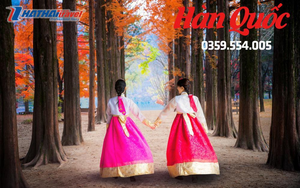 Hàn Quốc: Seoul-Nami- Everland-Yeouido Park 5N bay KOREAN AIR