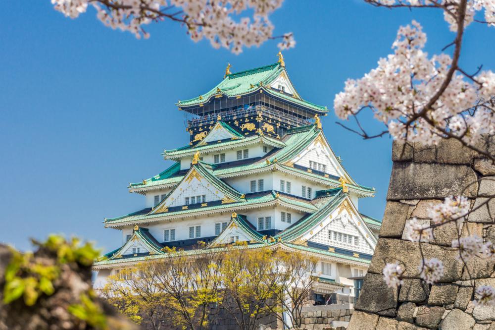 Nagoya - Osaka - Kyoto- Fuji Mt- Tokyo